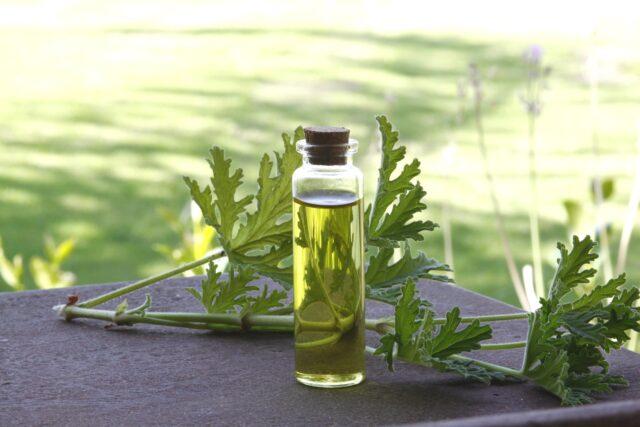 aromatherapy rules