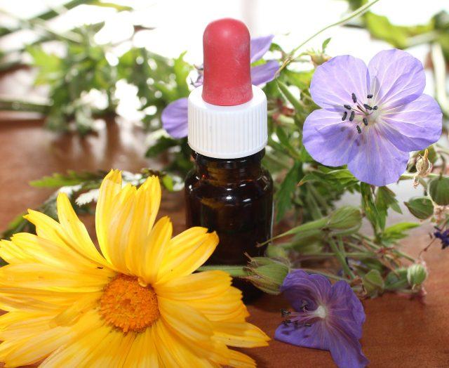 SchoolofCT | Aromatherapy training | JFairbrass