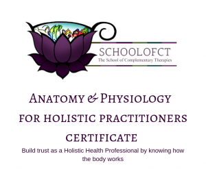 Learn more about why A&P is so important to a successful holistic practice